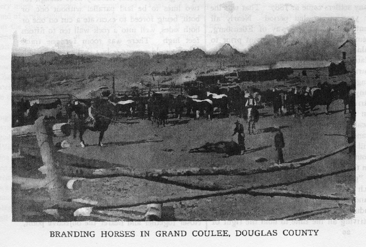 Branding Horses in the Grand Coulee